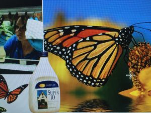 sgassatore ldc farfalle